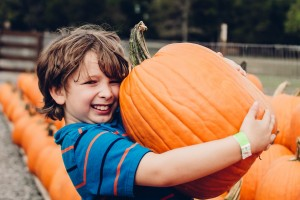 Pumpkin Picking at Lucky Ladd Farms